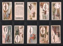 Tobacco cards set Cigarette cards set Angling 1930